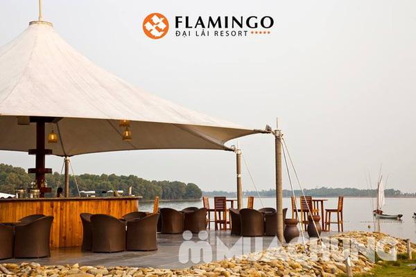 Flamingo Beach Club