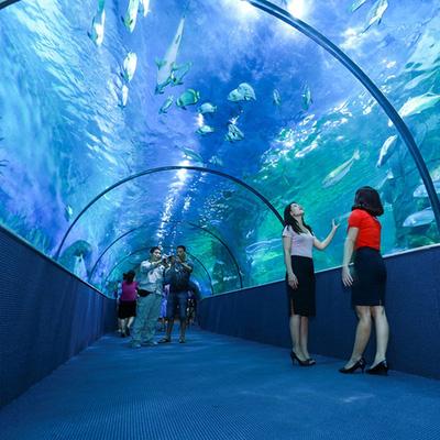 Vinpearl Land Aquarium - thủy cung hiện đại, lớn nhất Việt Nam