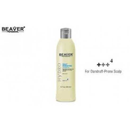 Combo Bộ dầu gội trị gàu, chống rụng tóc và dầu xả tái tạo Beaver Hydro