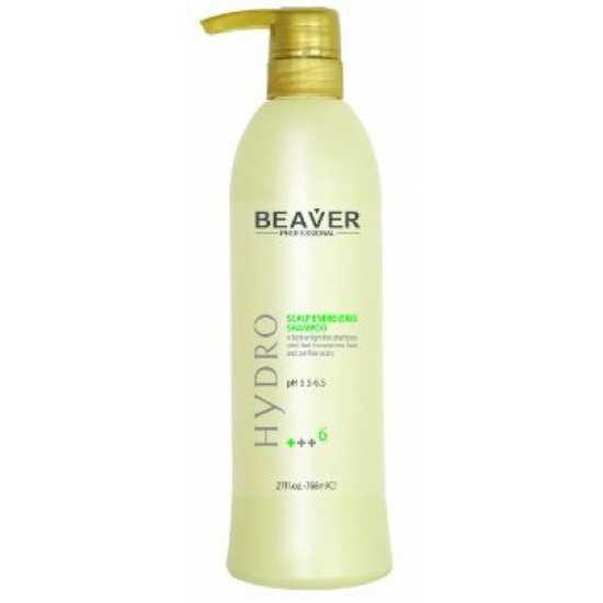 Combo Bộ dầu gội kích thích mọc tóc và dầu xả tái tạo Beaver Hydro 468ml