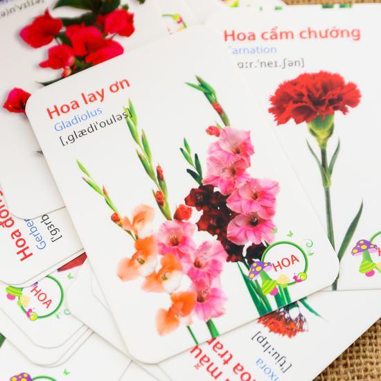 Bộ 416 thẻ học, 16 chủ đề song ngữ Anh - Việt