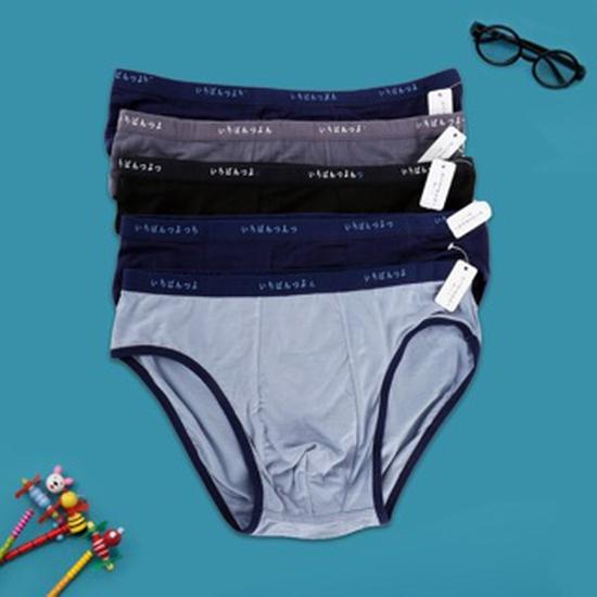 Combo 6 quần sịp tam giác cotton hàng xuất Nhật