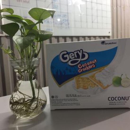 12 thanh bánh gery dừa 40gr ( Mua 1 tặng 1 cùng loại )