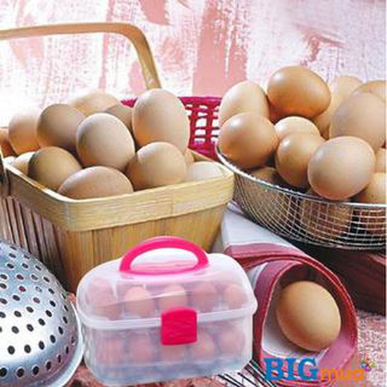 Hộp đựng trứng 2 tầng 30 quả