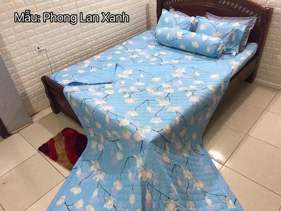 Set 5 món chăn hè ga chun phong lan xanh m6x2m