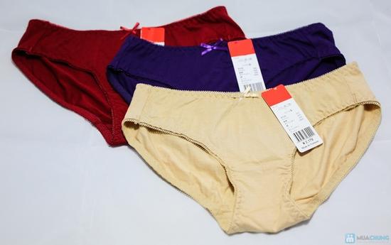 Combo 6 quần lót nữ trơn cao cấp - Hàng xuất khẩu