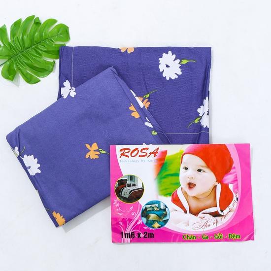 Bộ ga chun & 2 vỏ gối 1m6 x 2m cotton poly mềm mịn