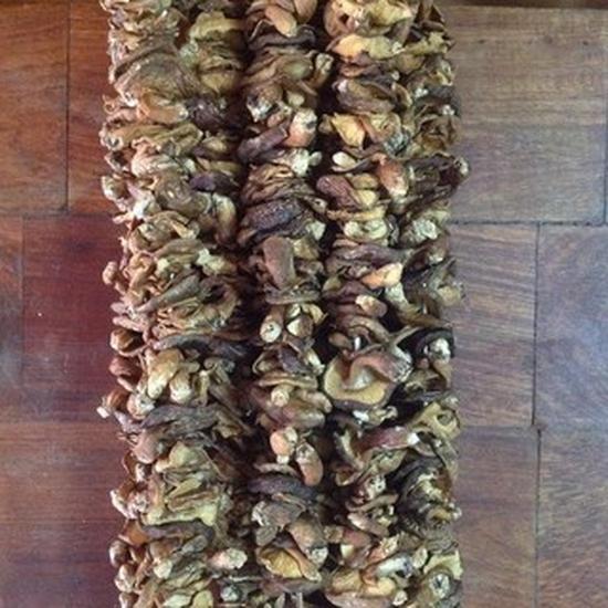 Nấm hương rừng Cao Bằng (100g)