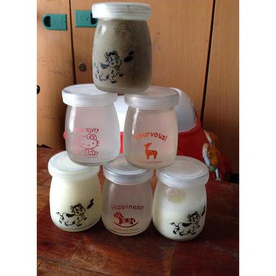 Bộ 12 hũ thủy tinh làm sữa chua tặng kèm khuôn kem thông minh