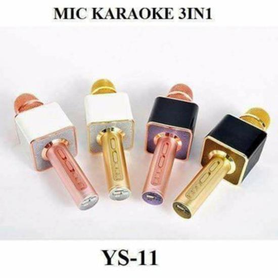 Mic hát YS11