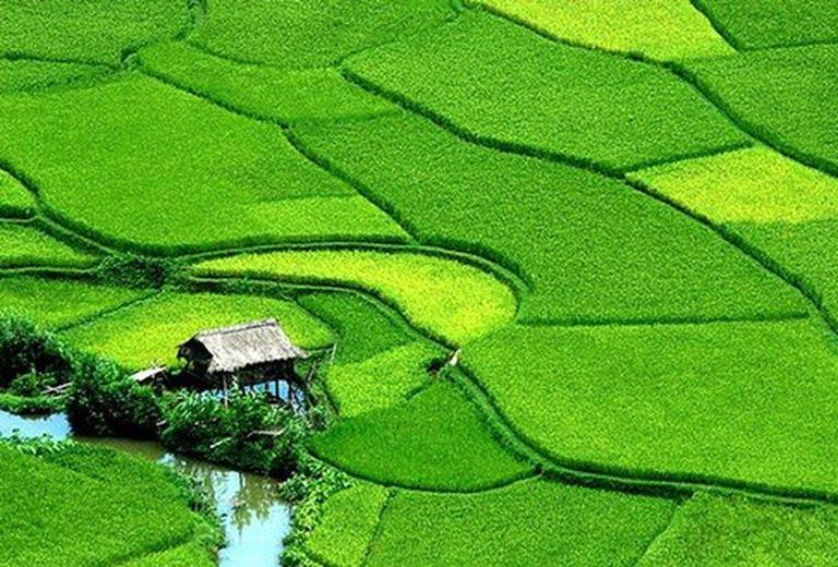 Khám phá vẻ đẹp của miền sơn cước Mai Châu - Hòa Bình, hoà mình vào đời sống của đồng bào Thái trong 2 ngày 1 đêm. Chỉ 632.000đ/người