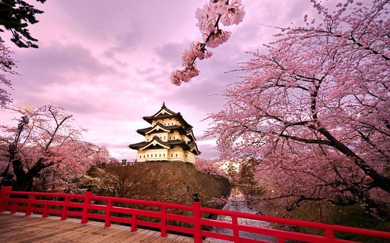Land Tour Hàn Quốc: Daegu 2N1Đ